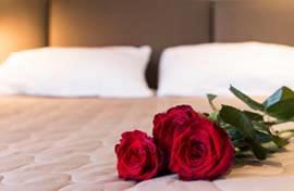 Bruidssuite hotels Oost-Vlaanderen